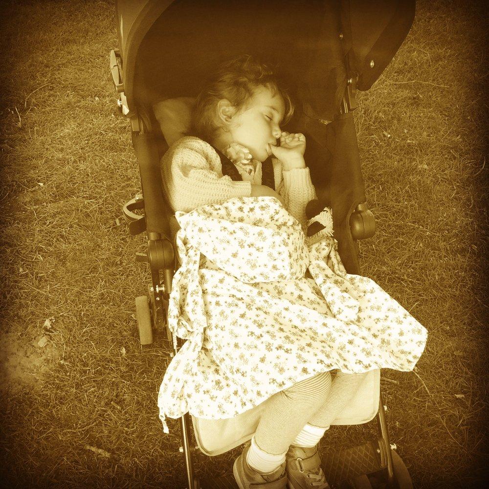 my beautiful granddaughter, asleep with Ian the sheep.