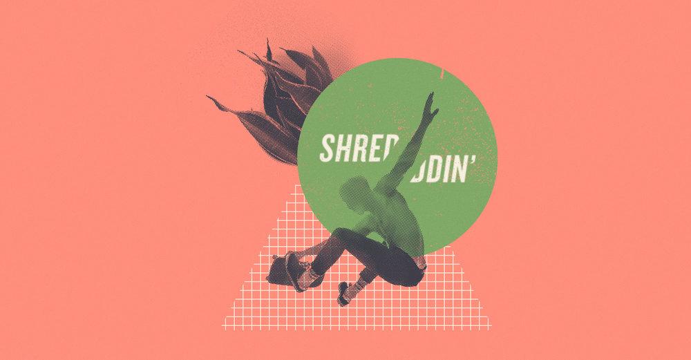 shred.jpg