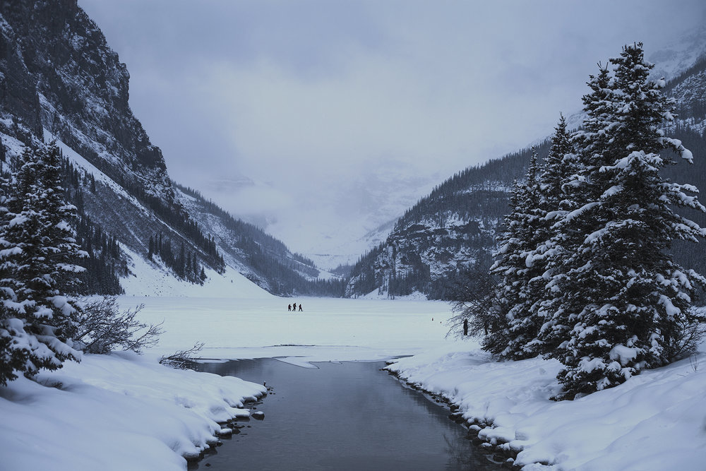 Winter at Lake Louise - 2014