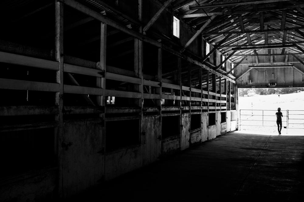 Rancho Oso Horse Barn