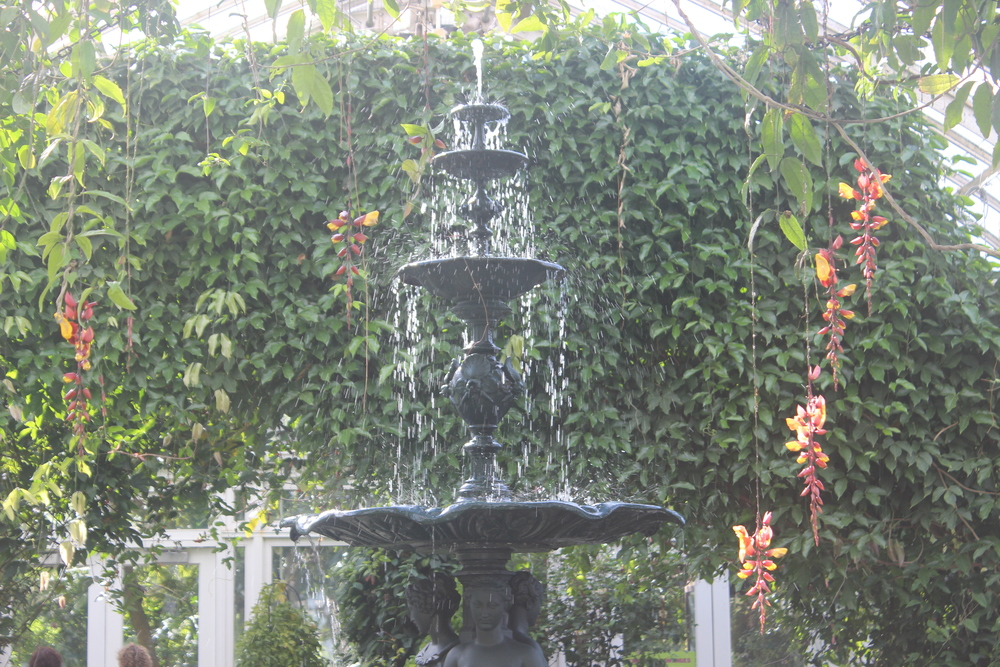 Botanical Garden 078.JPG