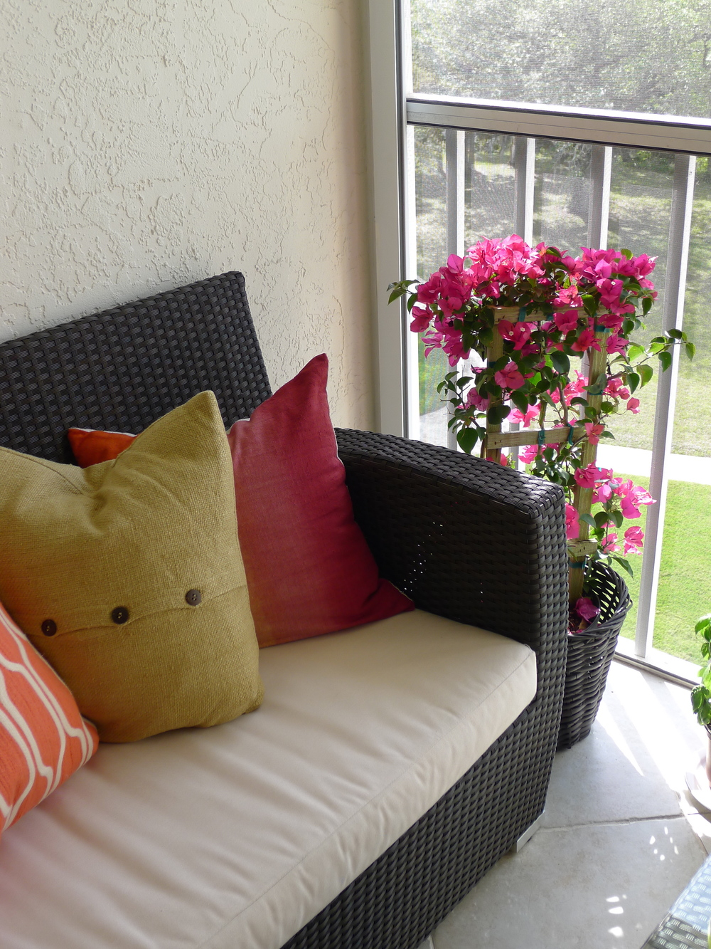 Lanai 2014 with Pillow pops of colour and beautiful bougainvillea plant in the corner
