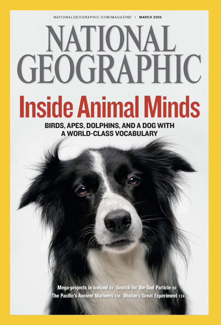 national-geographic-covers-jenny-adams-freelance.png
