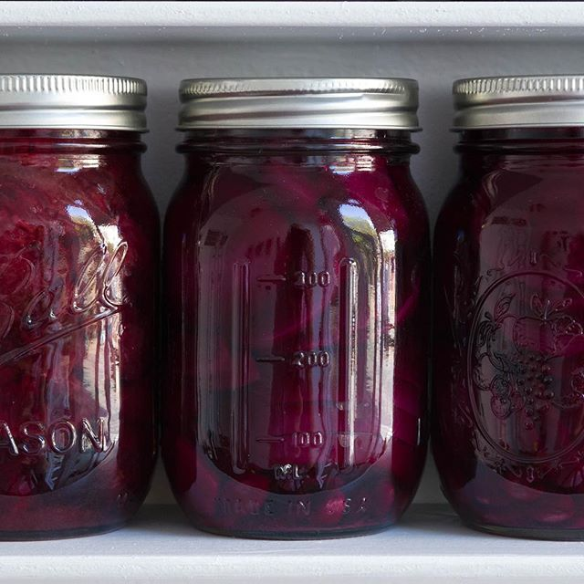 Curing Time is complete & these ruby-colored beauties are ready & waiting to grace your table. Pickled Italian plums with star anise, clove & red pepper (on the left) & gingery pickled beets (on the right). Available for $20 per jar with a postcard print of the installation. Message me to order!