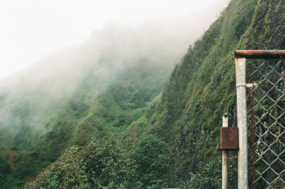 hawaii11filmwebsite.jpg