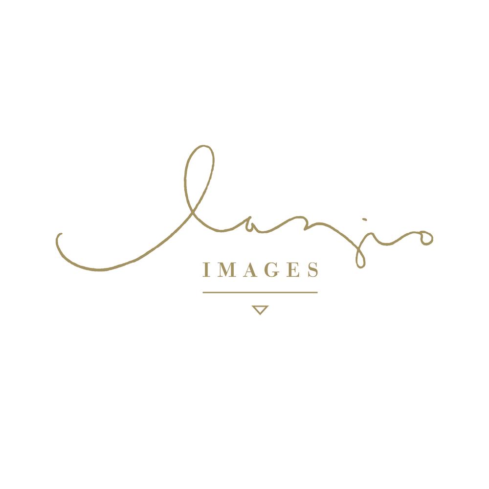 LogoDesign_FlightDesignCo39.png