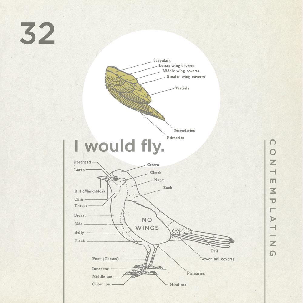 Figure No. 32