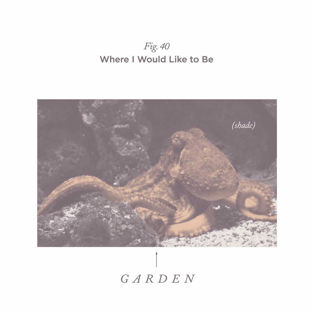 "No. 40 - ""Octopus's Garden"" by The Beatles"