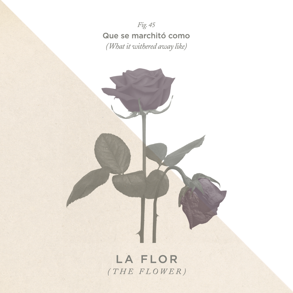 """No. 45 - """"Como la Flor"""" by Selena"""