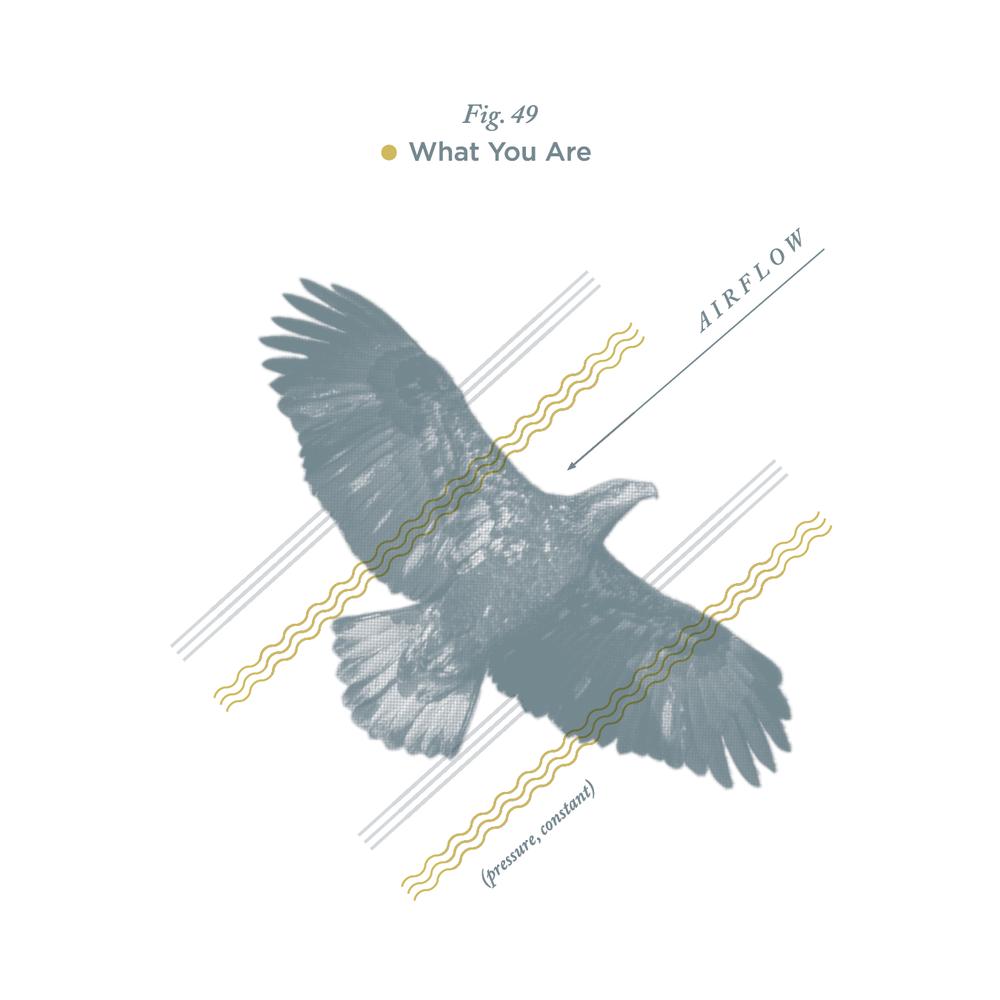 "No. 49 - ""Wind Beneath My Wings"" by Bette Midler"