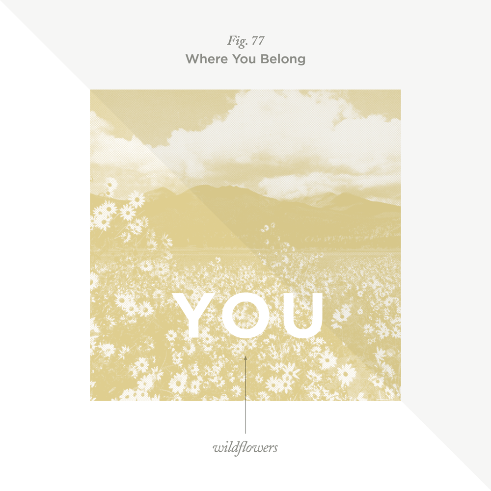 "No. 77 - ""Wildflowers"" by Tom Petty"
