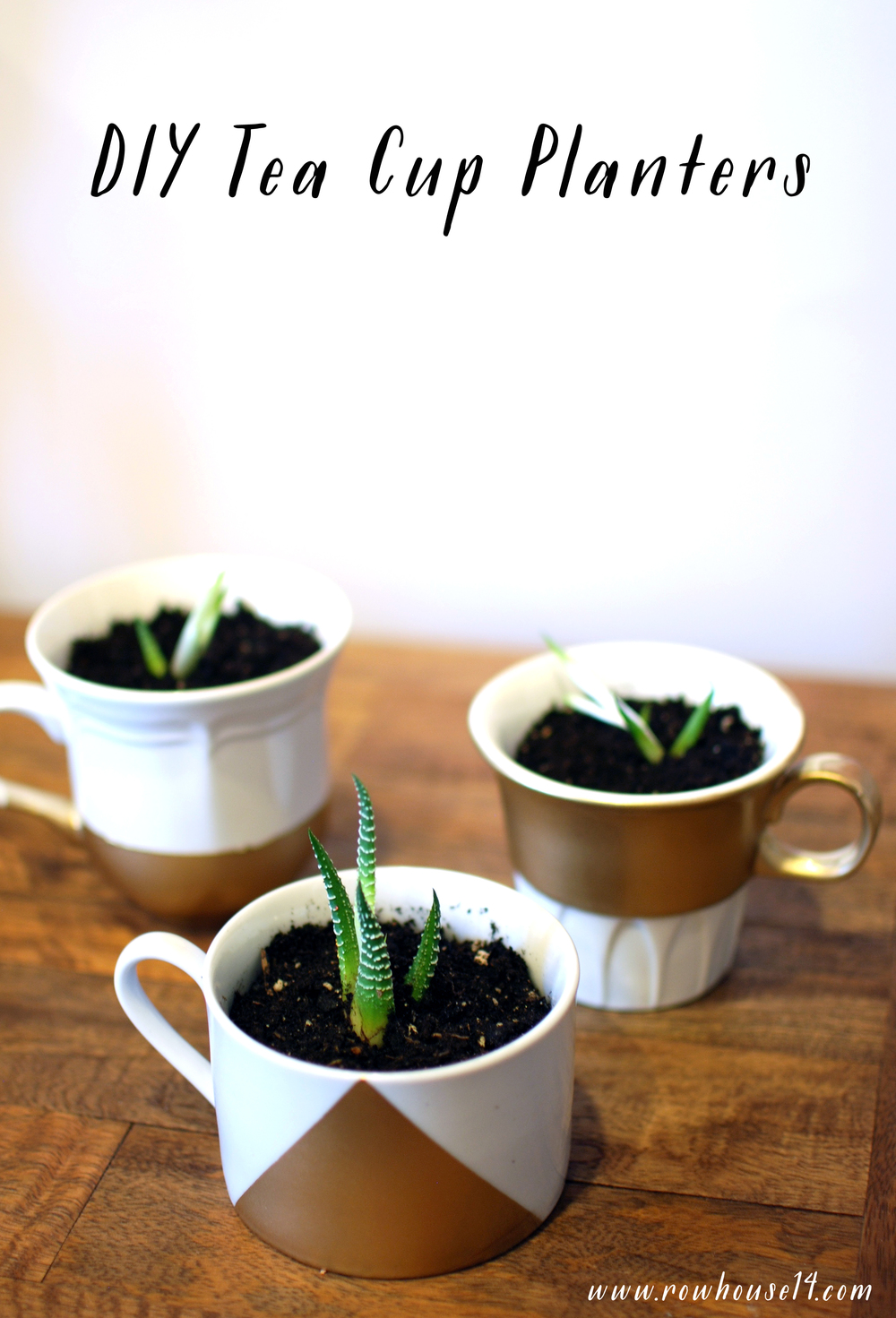DIY Tea Cup Planter