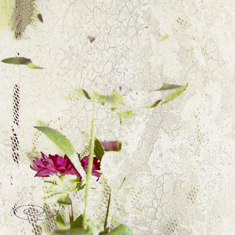 flowerblowout texture2.jpg