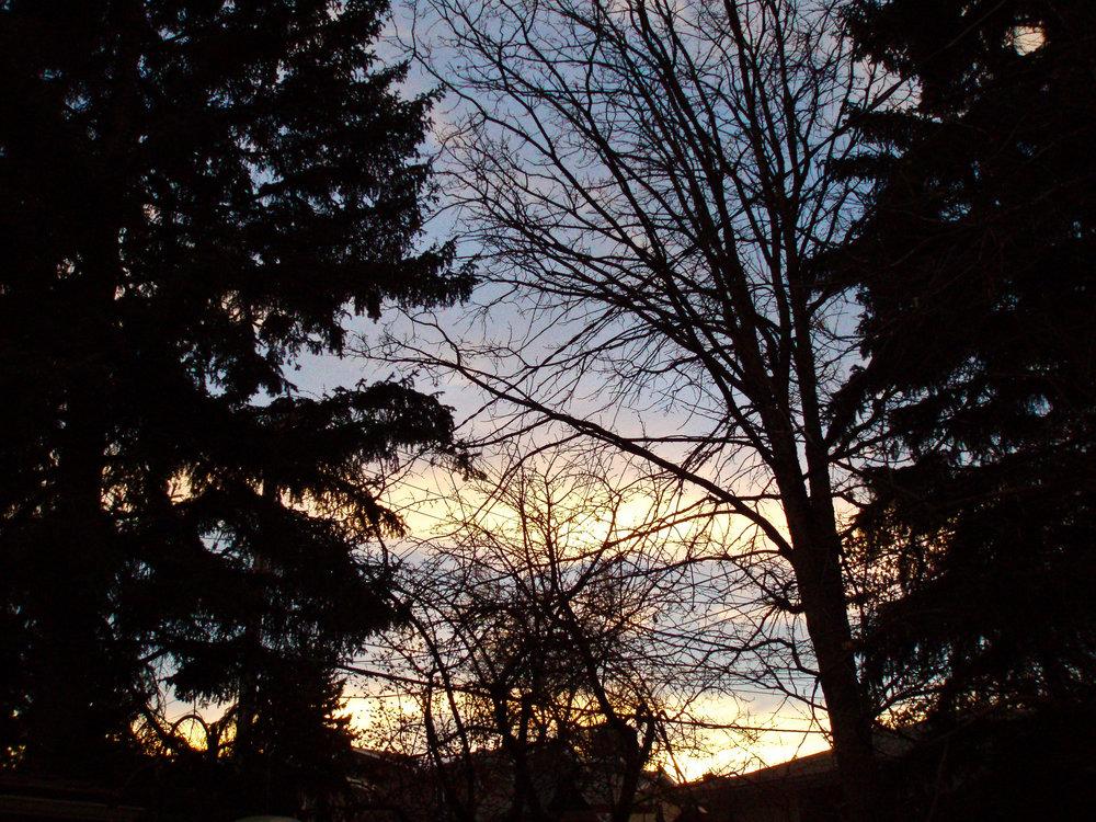 sky gold-1.jpg