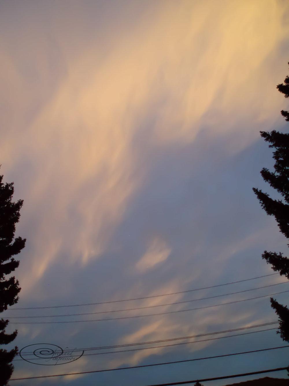 sky gold-2.jpg
