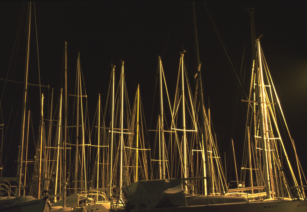 masts copy.jpg