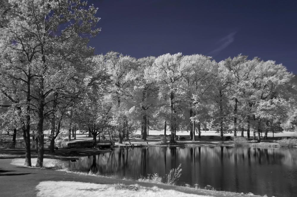 Bellvue State Park