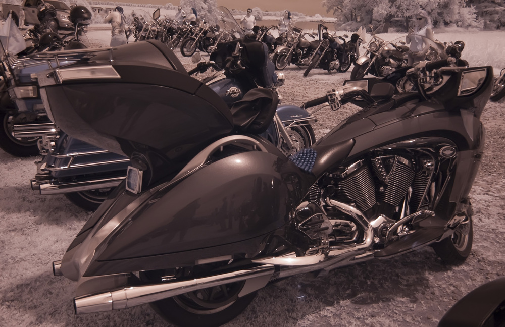 Hawgs for Dawgs motorcycle rally