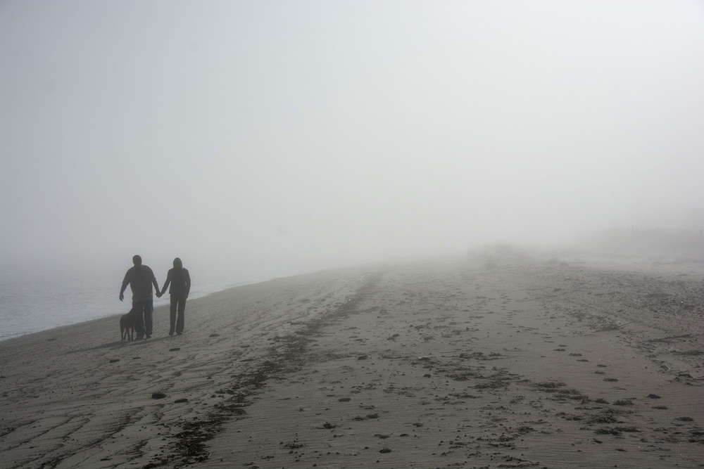 couple and dog walk on fogged in beach