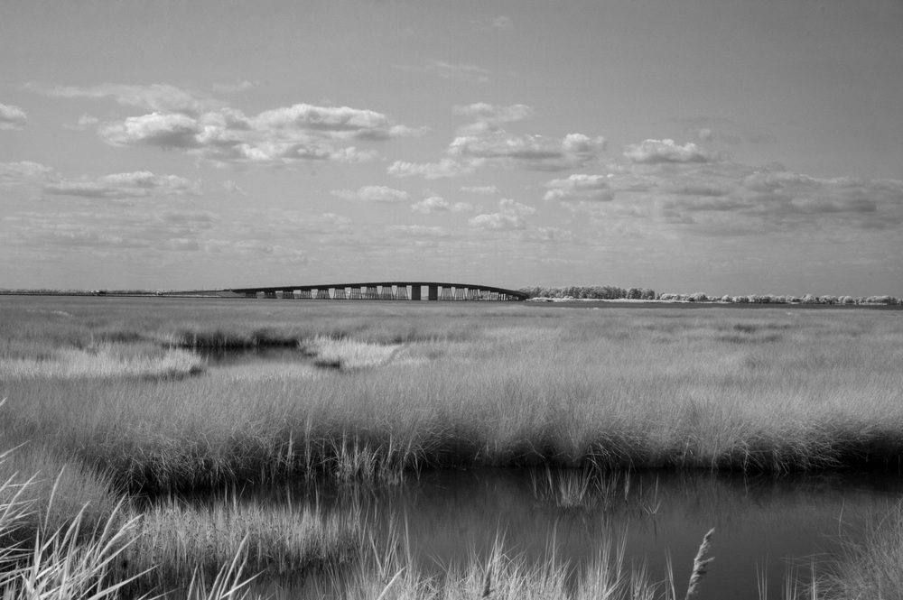 Infrared of Hooper's Island bridge