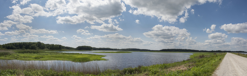 Bombay Hook NWR panorama