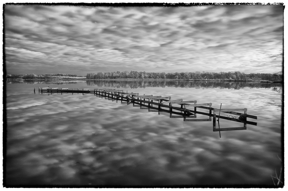 Dock infrared near Blackwater NWR