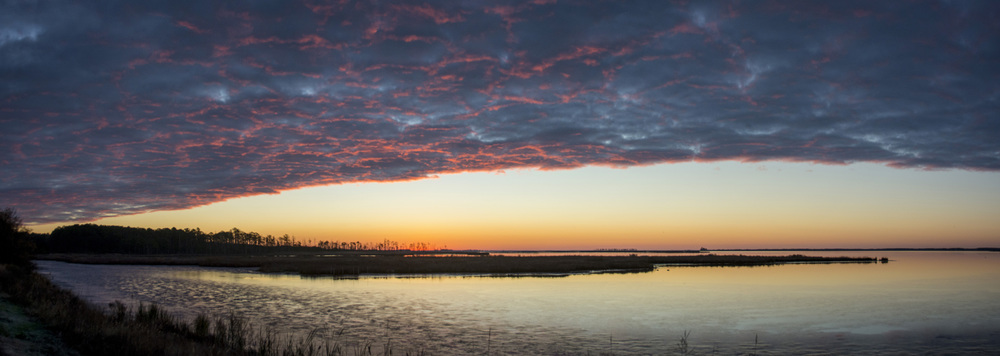 Sunrise Pano in Blackwater NWR