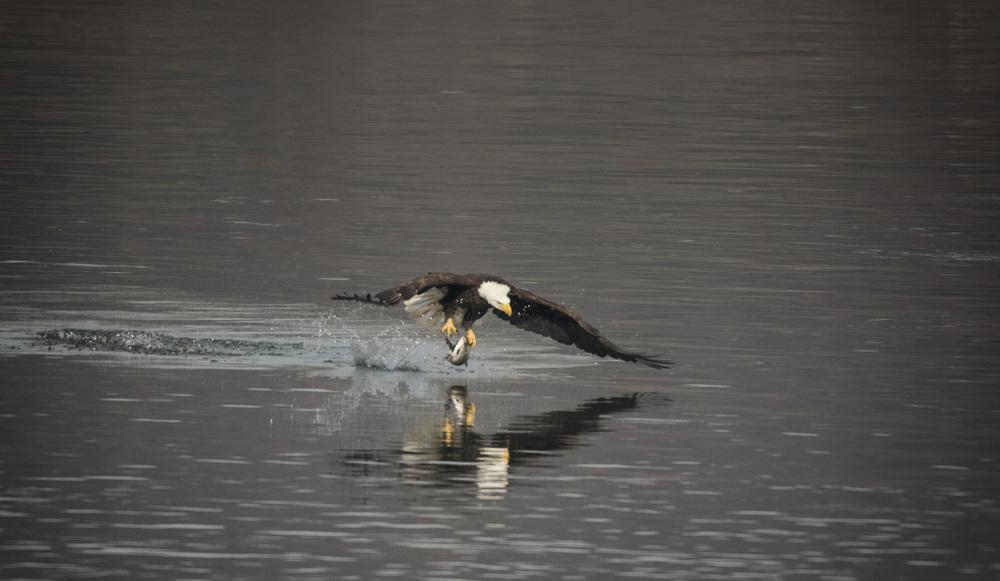 Fishin'!