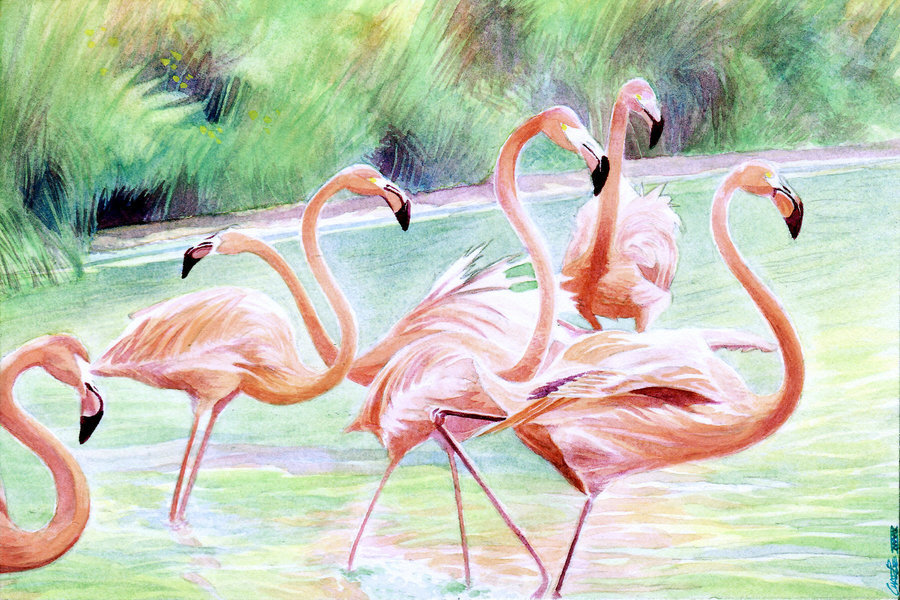 pink_flamingos_by_artofmadness-d2x7giw.jpg