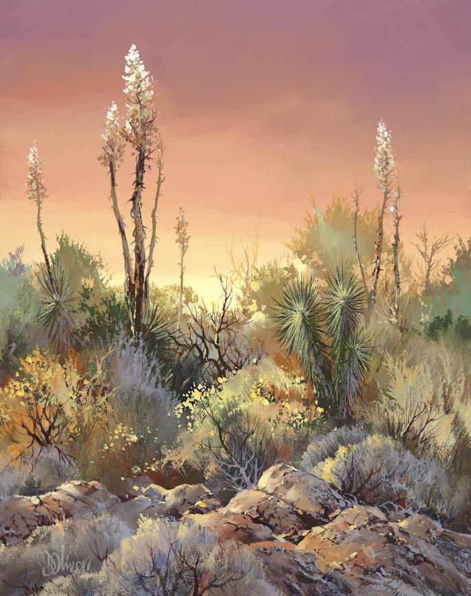 Mojave Garden