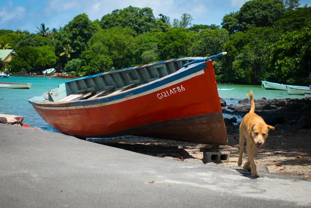 20150210 - Mauritius Village (1500) -4.jpg