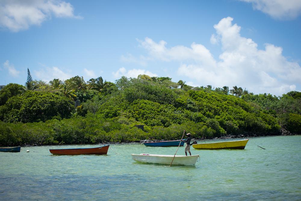 20150210 - Mauritius Village (1500) -8.jpg