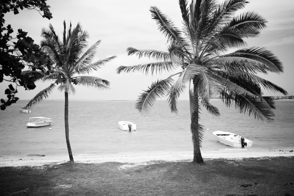 20150211 - Mauritius Village (1500) -23.jpg
