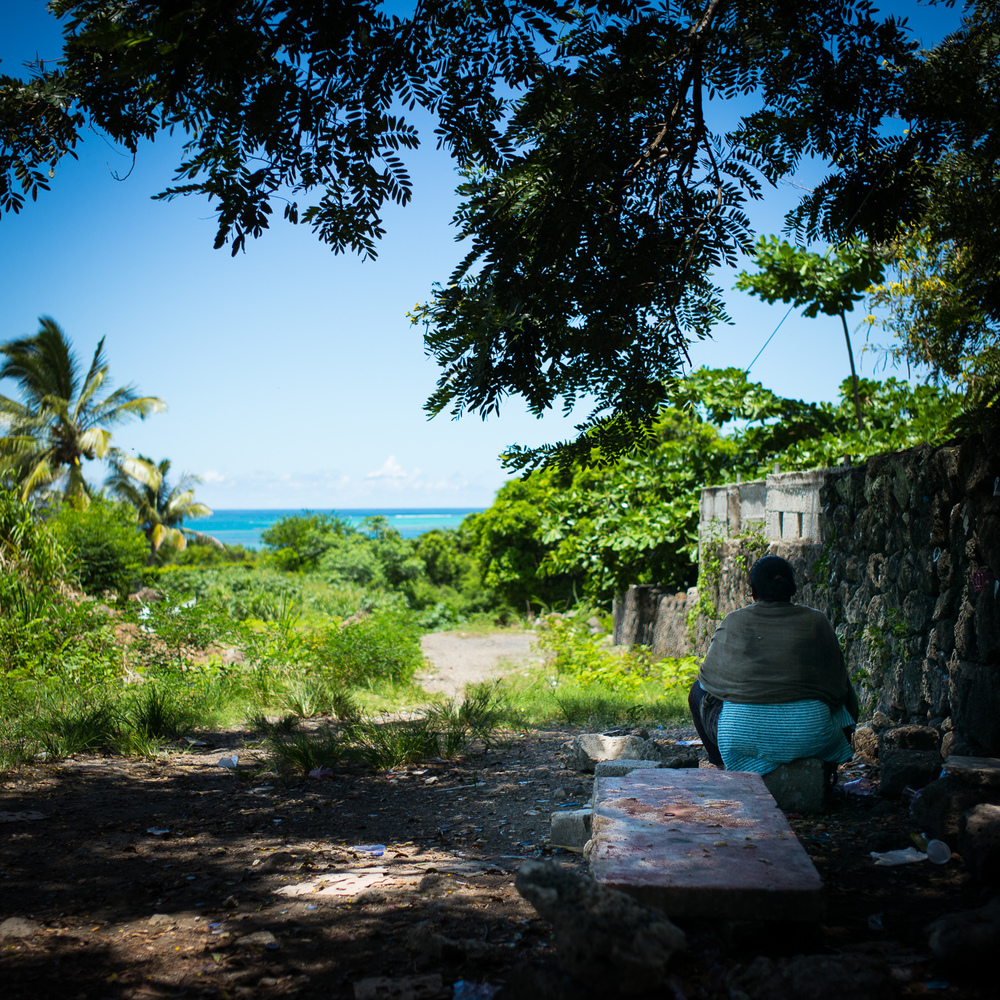 20150216 - Mauritius Village (1500) -84.jpg