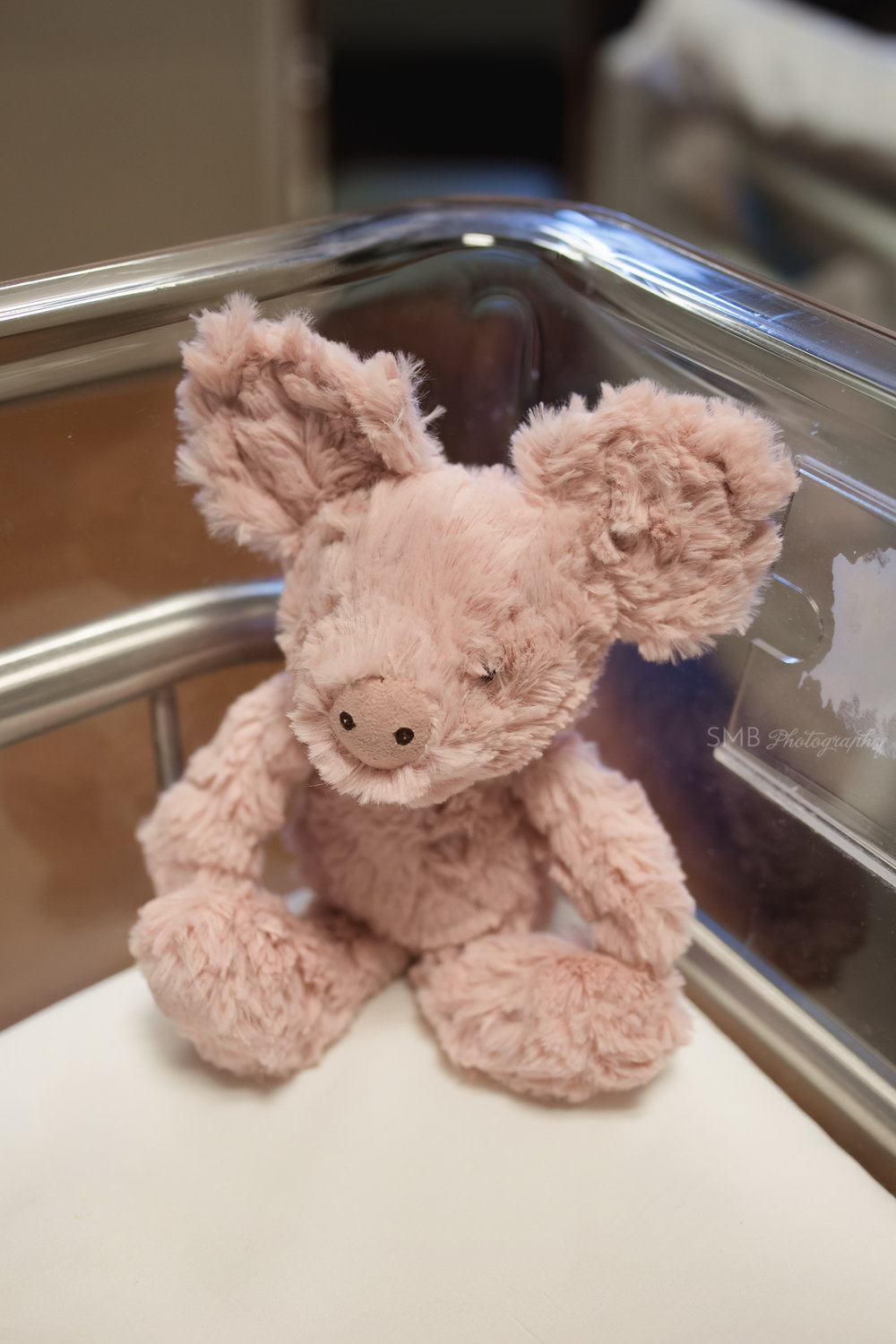 Stuffed animal in hospital bassinet