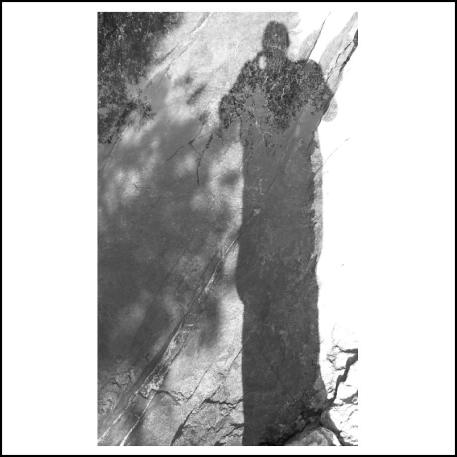 sierra shadow figure