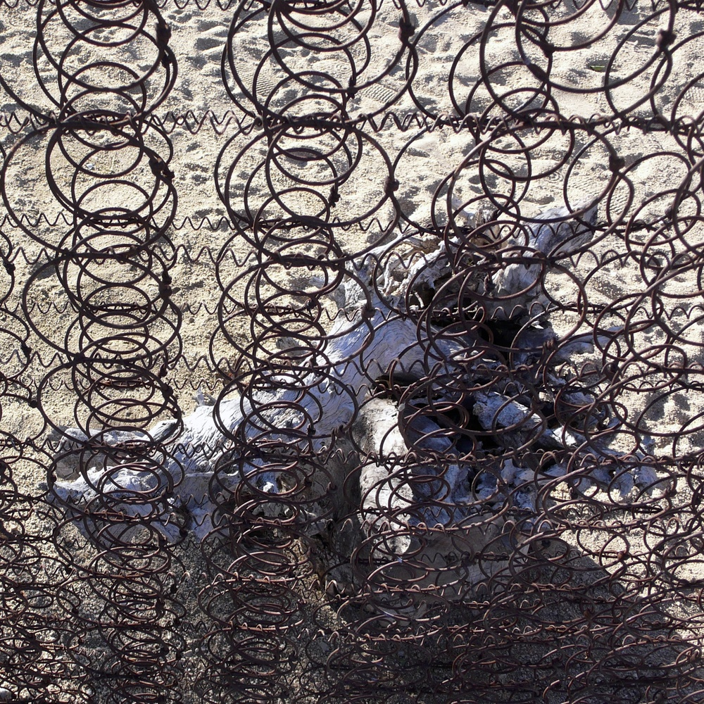 Bedspring Fence with Skull, Mojave Desert, California