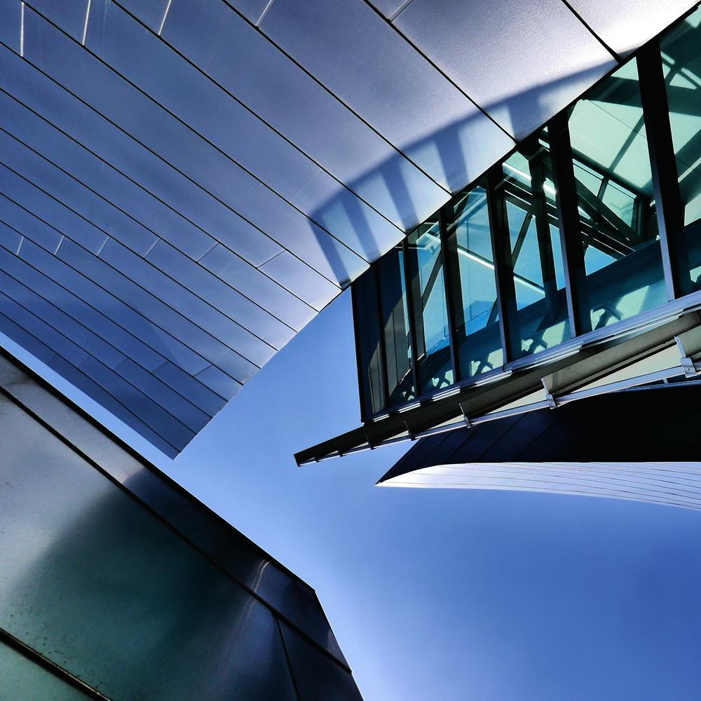 Gehry /Disney