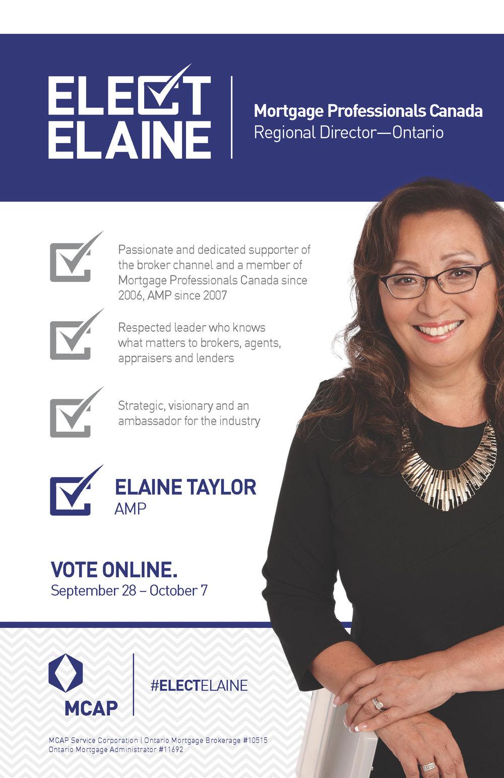 Elect Elaine Campaign Creative