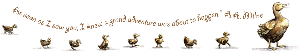 ducklings-adventure.jpg
