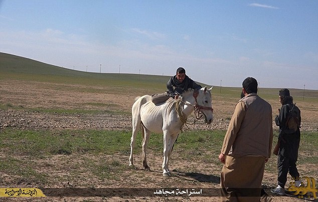 Yipee-Qay-Yah!! This photograph shows one of the militants grinning as he struggles to climb on to the back of a white horse. The animal looks so ill-treated and malnourished that its ribs are clearly visible.