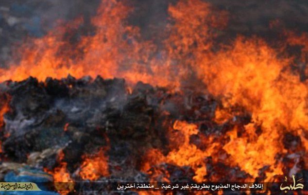Waste:The barbaric terror group released photos show crates of chicken being set alight in a field near the city of Aleppo despite the meat being slaughtered according to Islamic law and perfectly fit for eat.