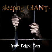 Sleeping+Giant+dvd+cover.jpg