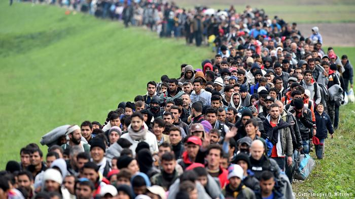 A river of migrants pours through Slovenia last year.