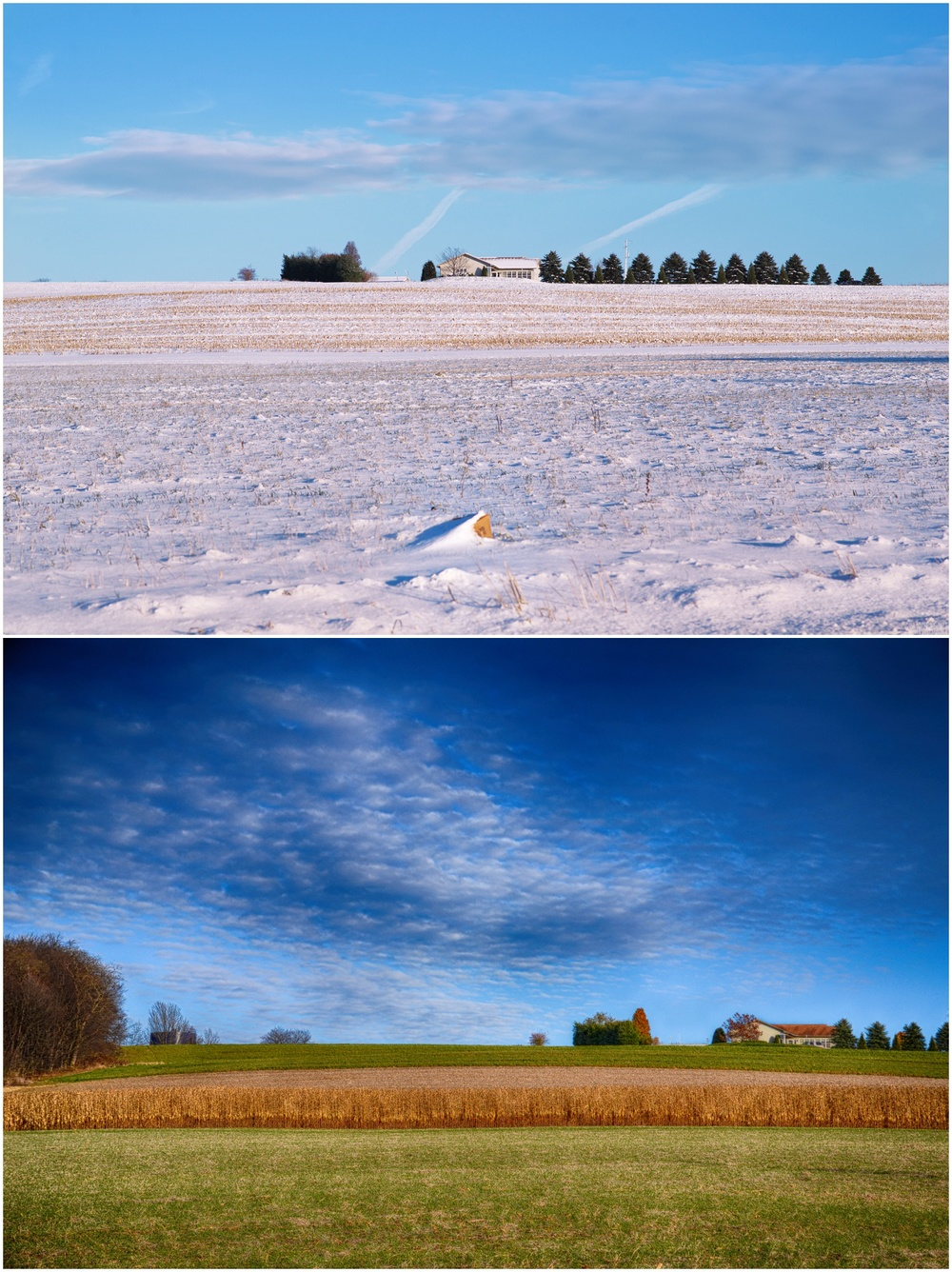 Davidsville: Winter vs Summer