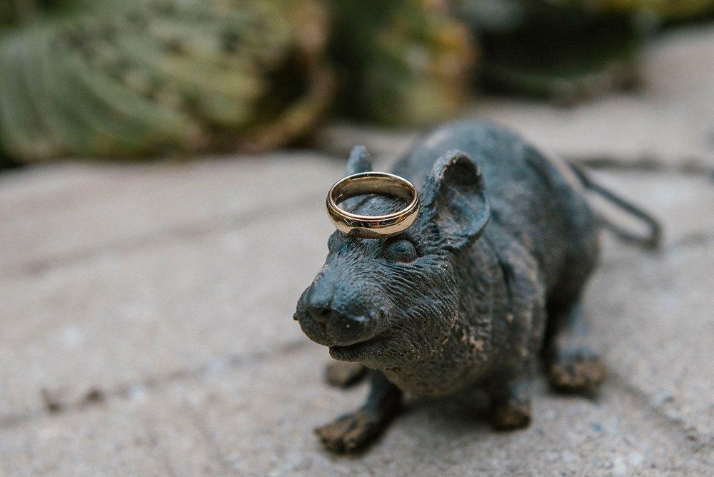 ring-shot-creative