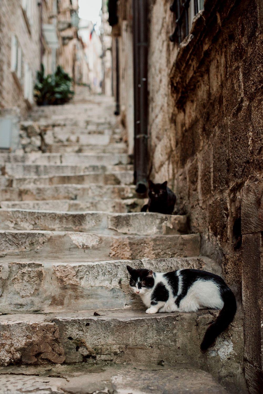 SCP_8540-_Dubrovnik-Croatia.jpg
