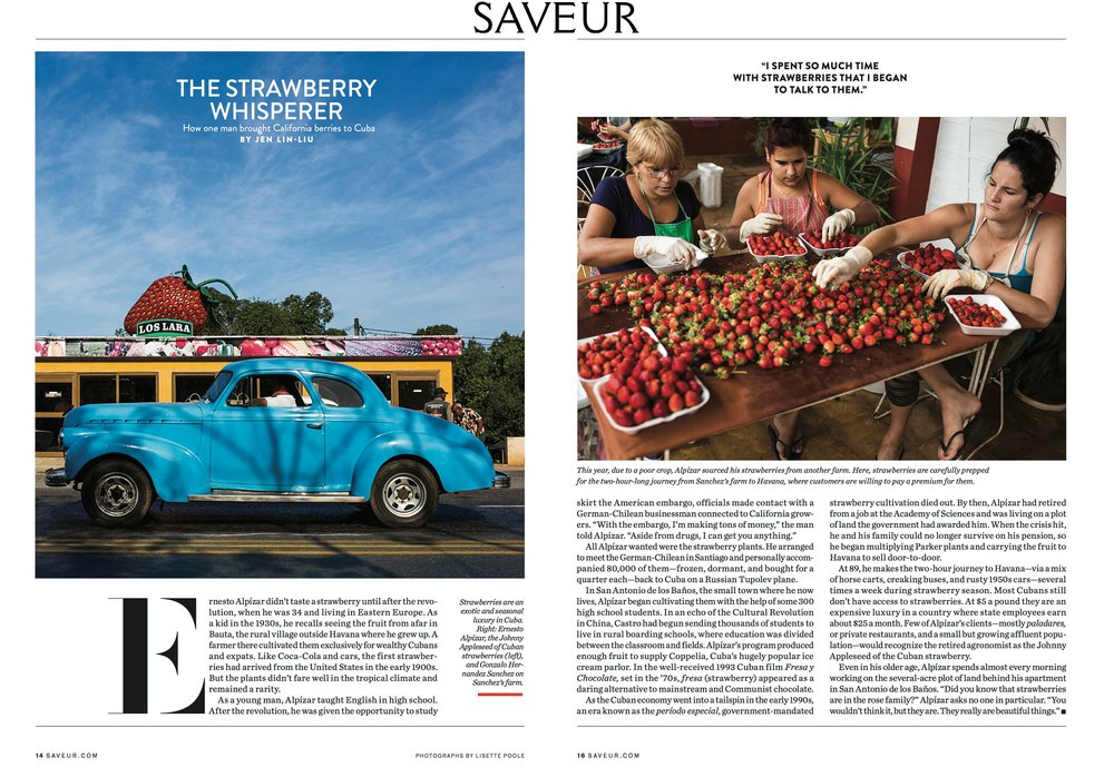saveur tearsheet FINAL FINAL.jpg