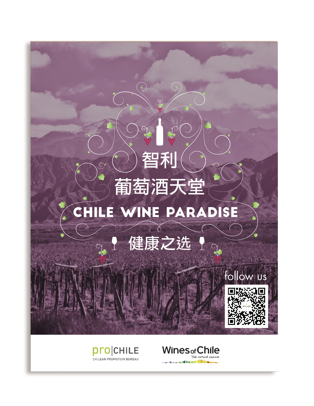 Chile Wines