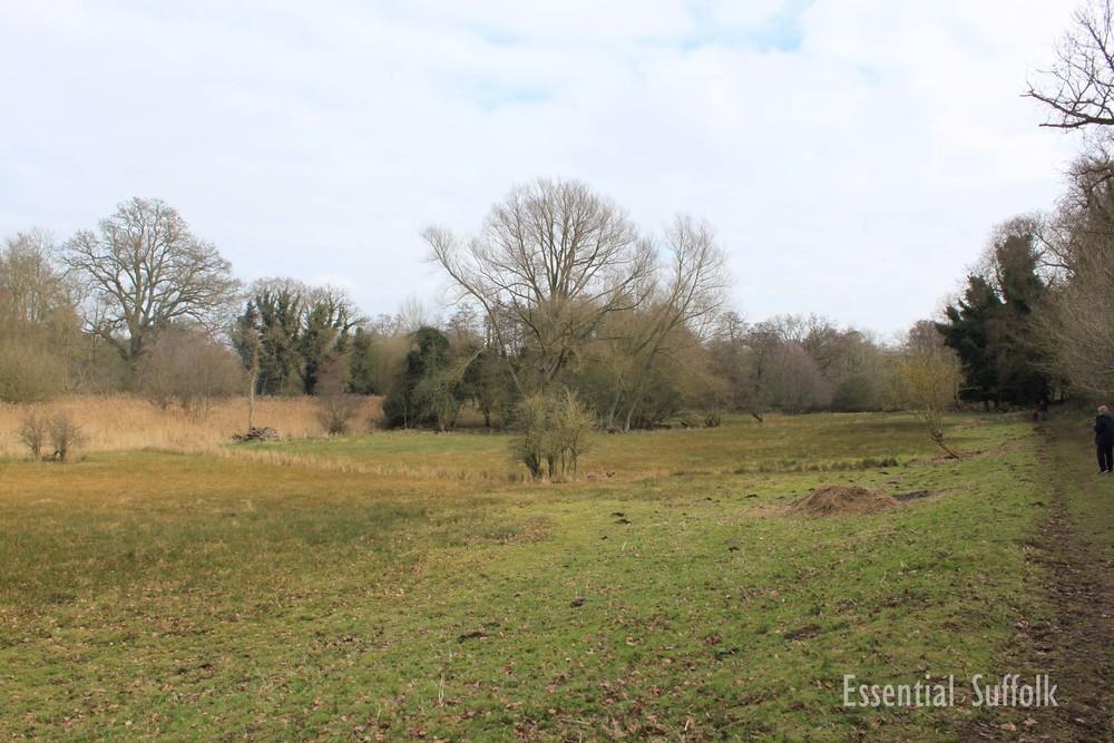 Newbourne Dog Walk 2 14.jpg